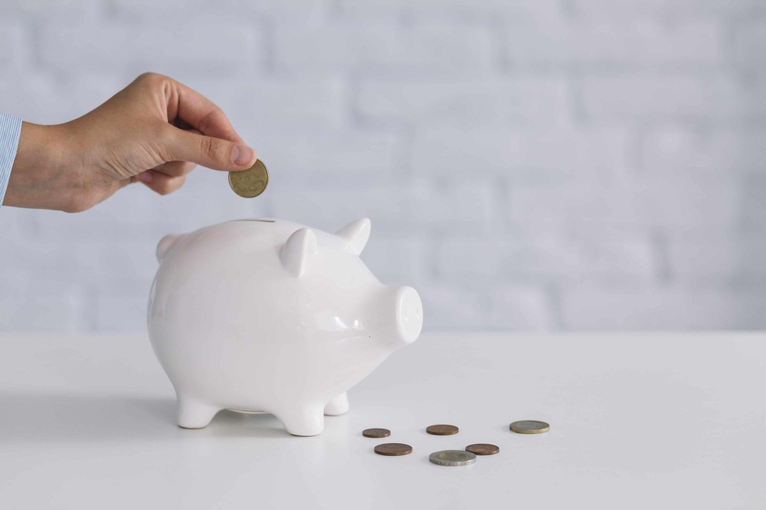 tirelire cochon et monnaie